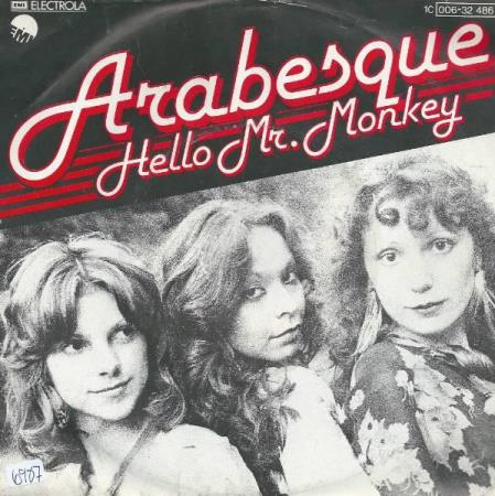 ARABESQUE:  Hello Mr Monkey
