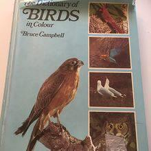 The Dictionary of Birds in colour by Bruce Campell. 1974,