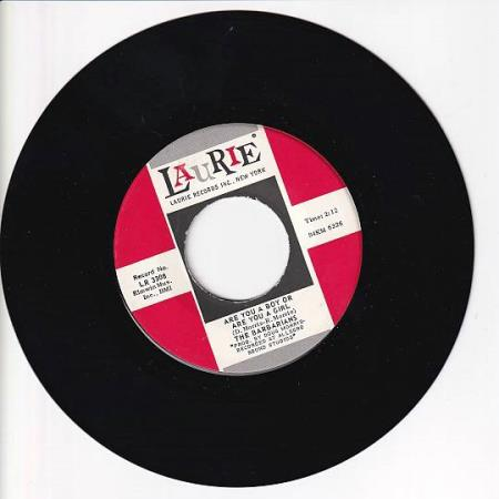 The Barbarians - Are You a Boy Or Are You a Girl /