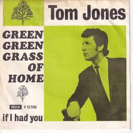 Tom Jones - Green Green Grass of Home / If I Had You - DANSK